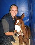 Neonatal Foal Care