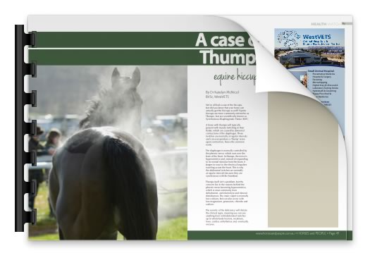 A Case of Thumps - Westvets Veterinary Practice
